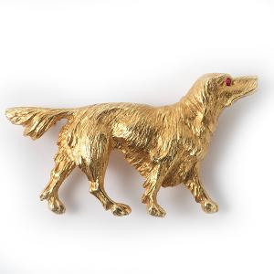spaniel-in-gold