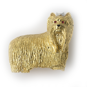 yorkshire-terrier-in-gold